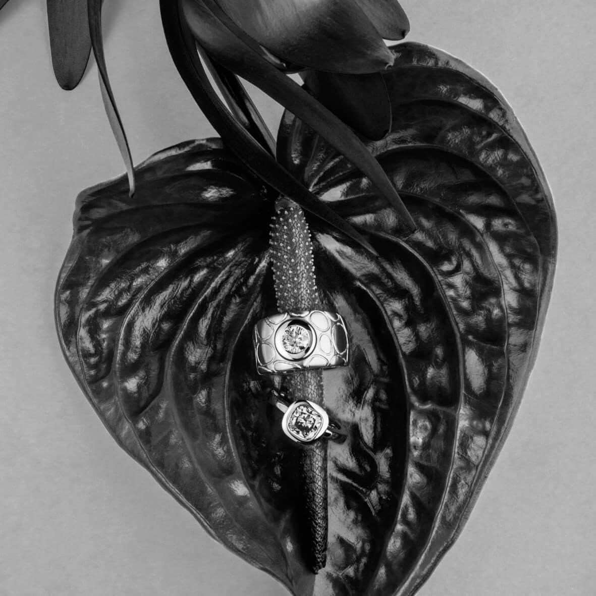Blume und Ringe - Produktfotografie